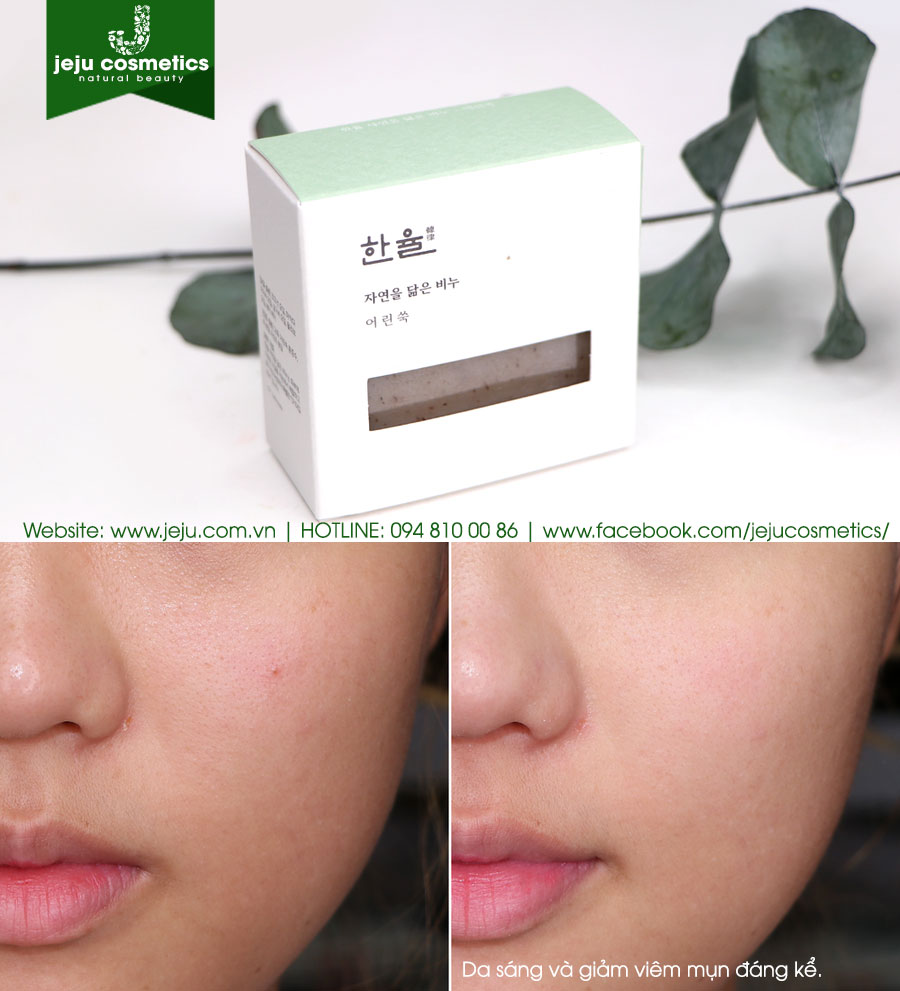 Hanyul Natural Oil Soap Pure Artemisia