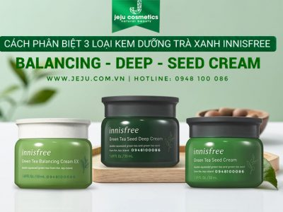 cach-phan-biet-3-loai-kem-duong-tra-xanh-innisfree-balancing-deep-seed-cream-2